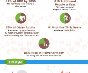 Ageing in Ireland, The Facts